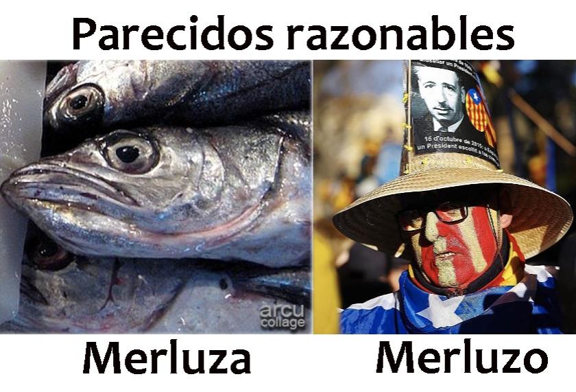 parecidosrazonables_merluza
