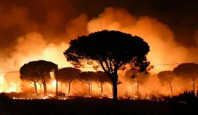 incendio-huelva-donana-k10C--1540x900@abc