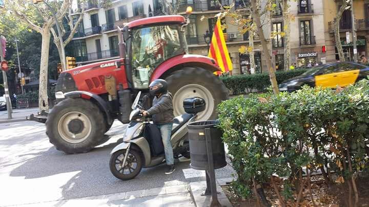 tractorada.jpg