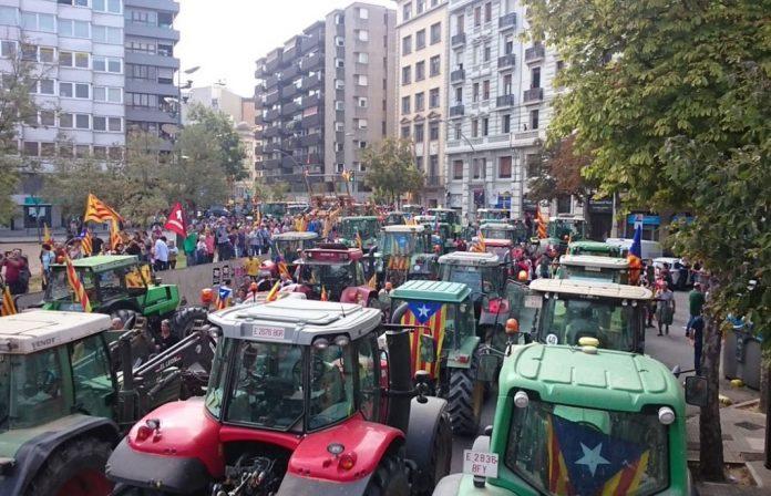 agricultores-696x448.jpg
