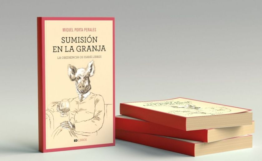 book-sumision_15_970x597